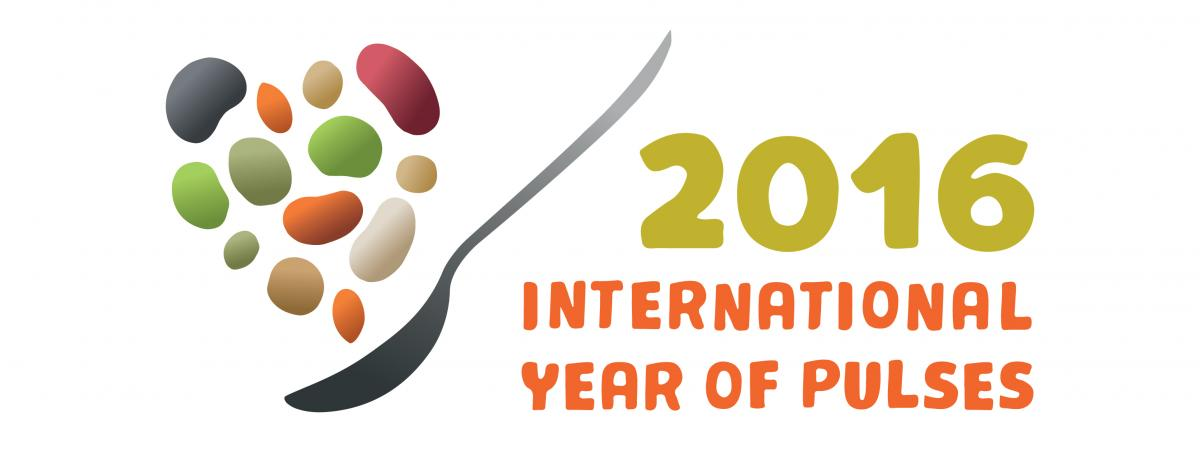 Year of the Pulses Logo