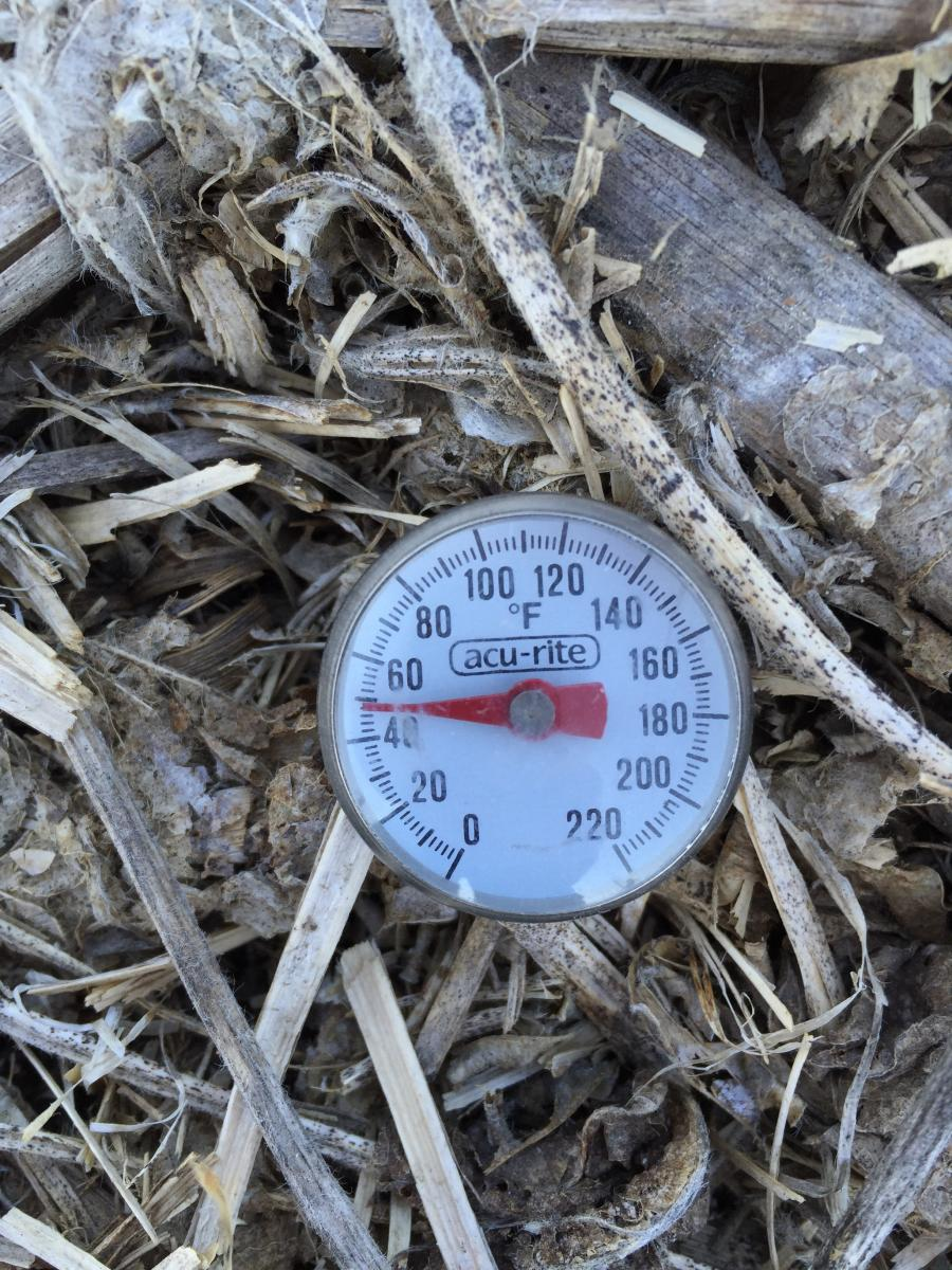 Photo of thermometer in the soil