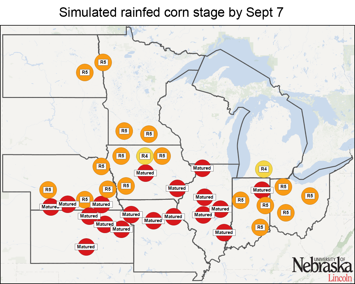 Simulated rainfed corn stage by Aug. 24
