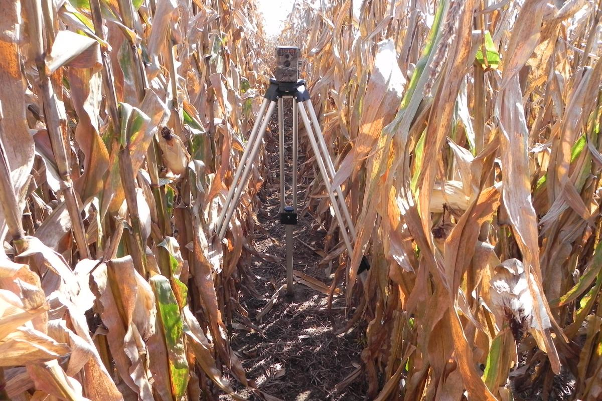 Field camera used to capture time lapse of corn growing