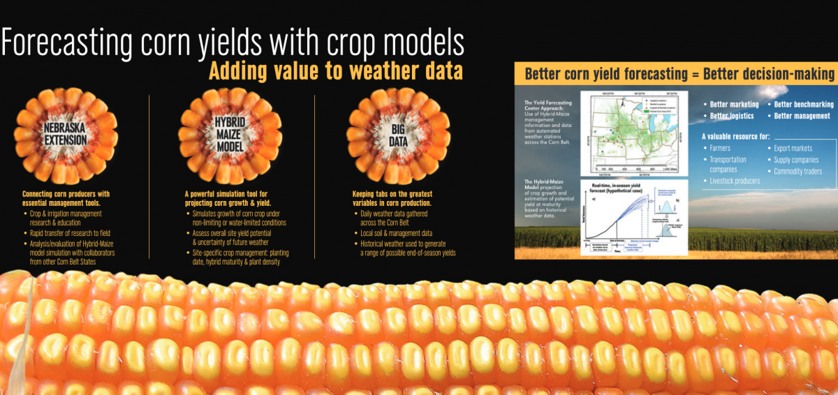 HHD 2016 Display on Climate Effect on corn yield forecasts