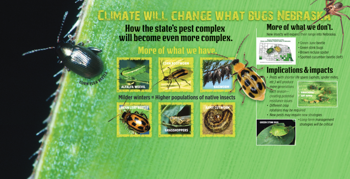 HHD 2016 Display on Climate Effect on Insects