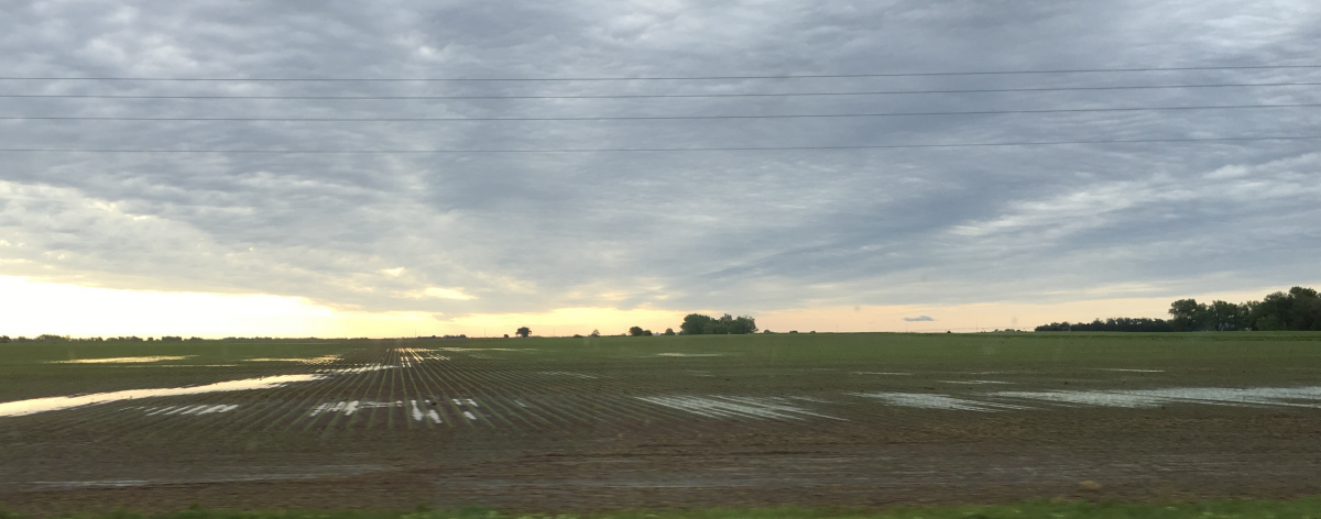 Ponding in already saturated fields in Fillmore County