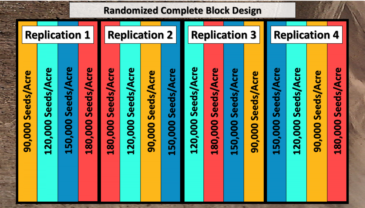 Randozimed, replicated design for 3-4 treatments