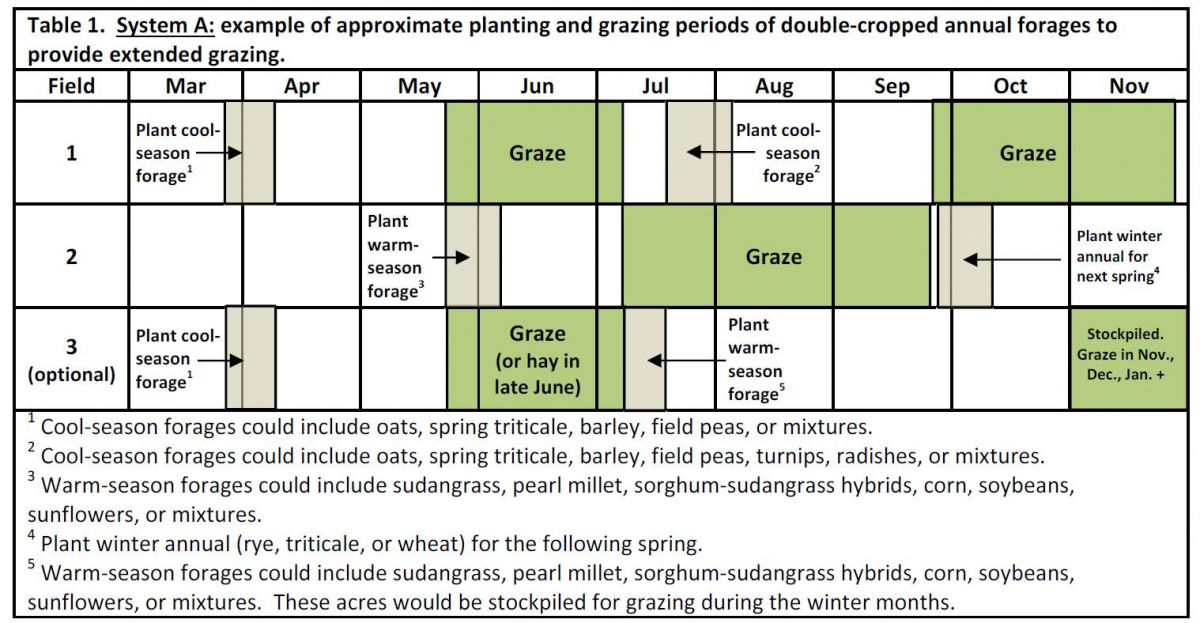 Forage System Plan A