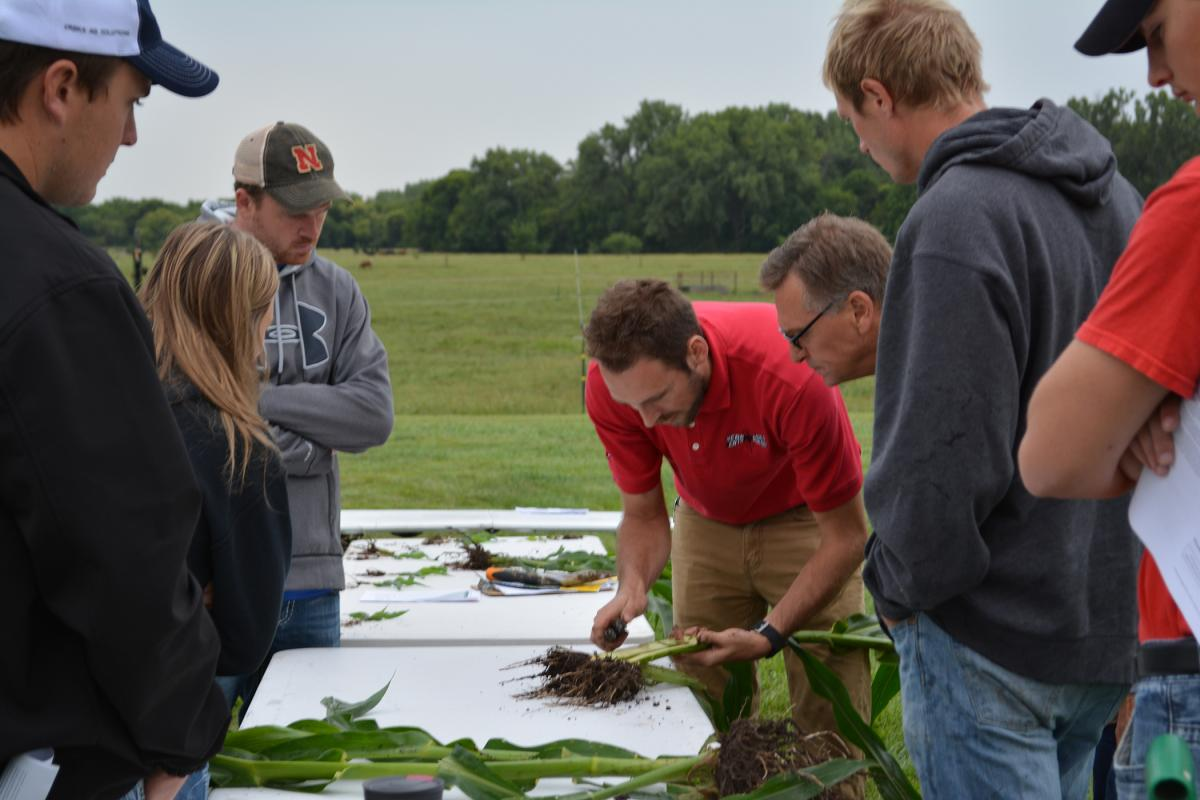 Justin McMechan working with participants to examine corn roots.