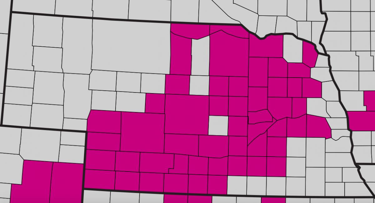Nebraska map showing counties with bacterial leaf streak.