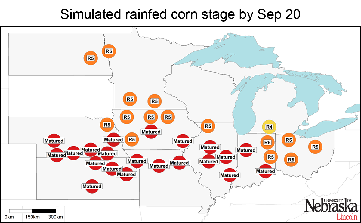 Estimated corn growth stage at rainfed sites