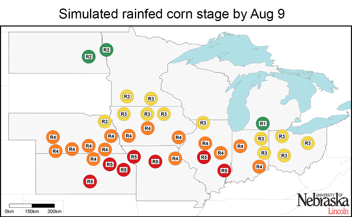 Estimated corn growth stage at rainfed sites, July 18, 2017