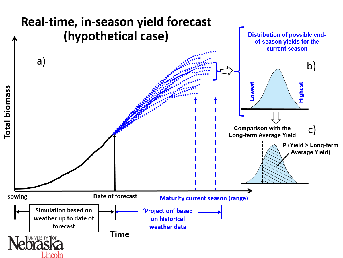 Graph of in-season corn yield forecast