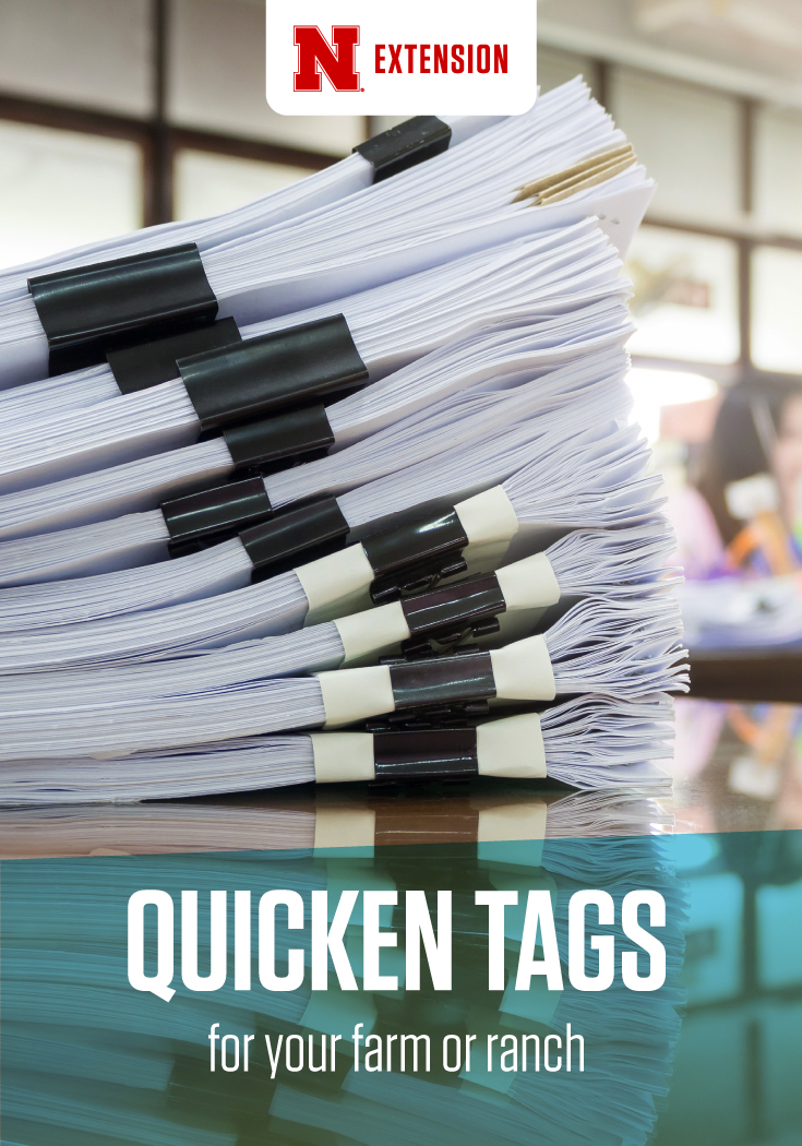 Illustration of sorting with Quicken Tags