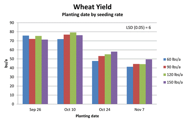 Chart of wheat yields per planting date and seeding rate