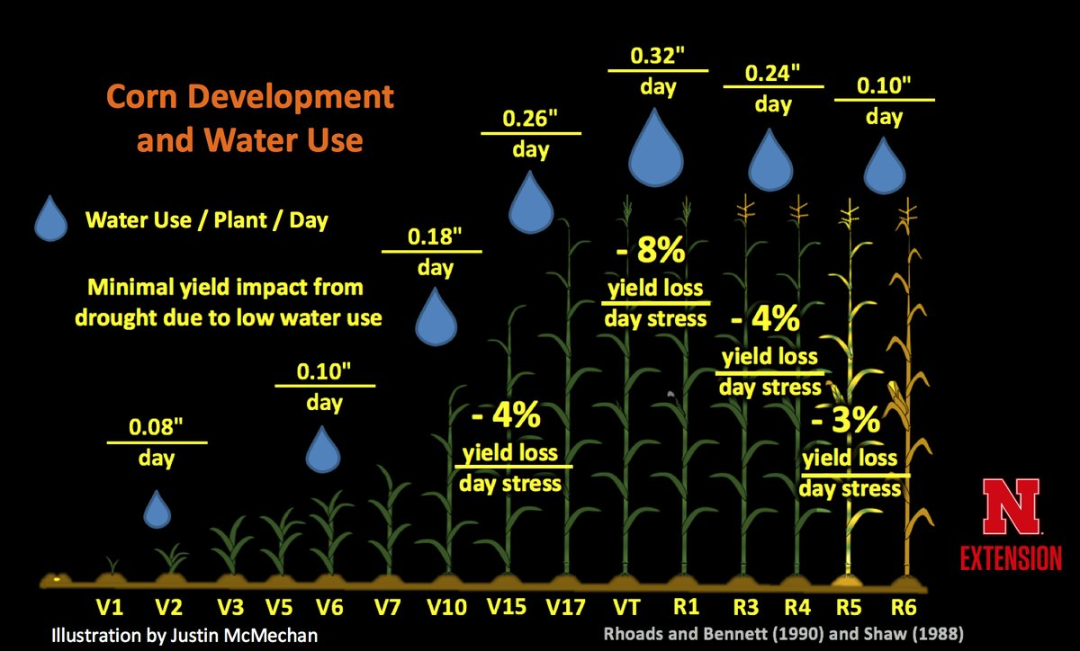 Chart of Corn Development and Water Use