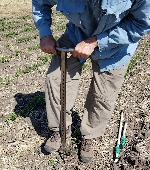 Installing an irrigation sensor in field