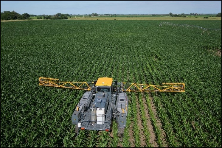 Project SENSE in corn