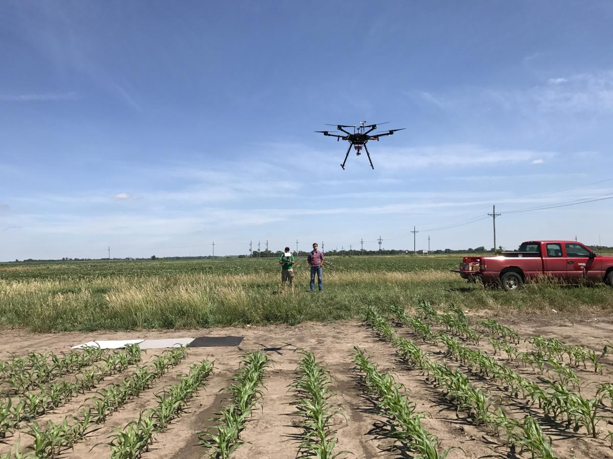 Drone flight over corn