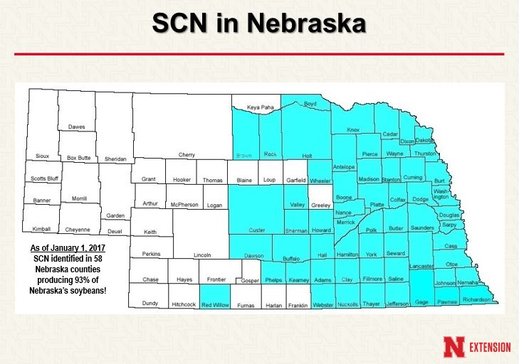 Nebraska map showing counties with SCN