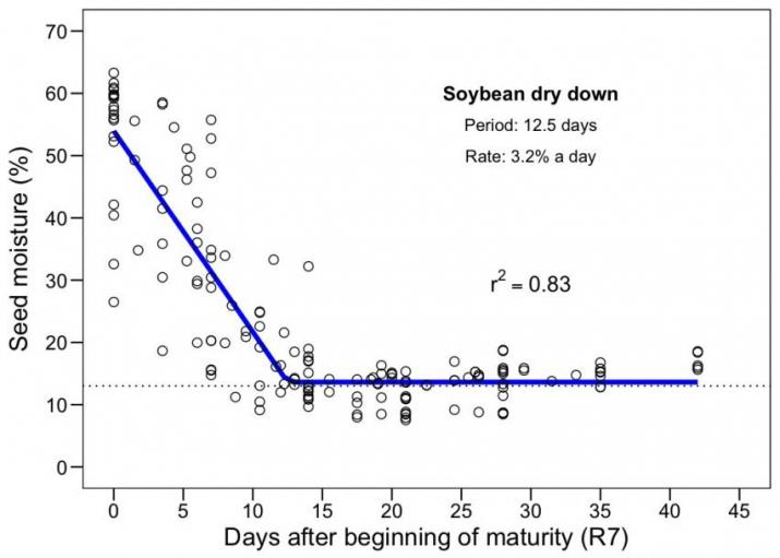 ISU Chart on Dry-down rate of soybeans R7-R8