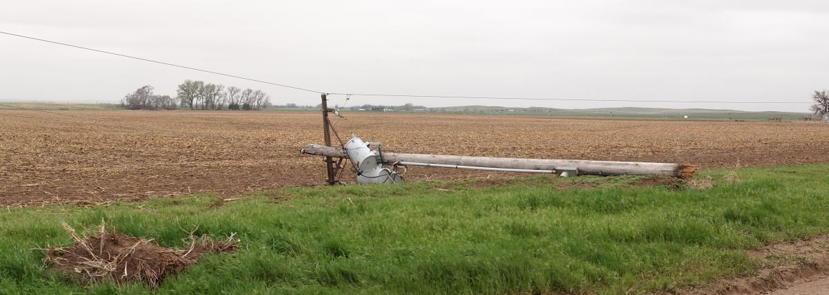 Power pole snapped over by high winds