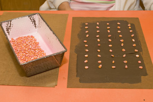 Seeds are counted and placed in cold soil paste