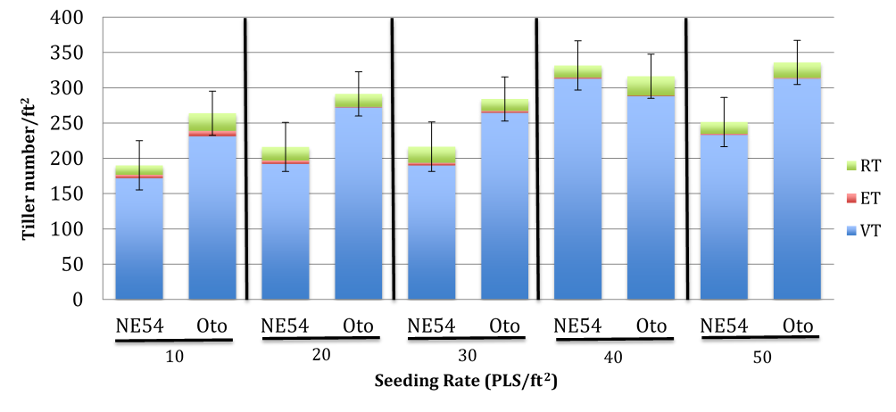 Graph of tiller numbers of various indiangrass seeding rates