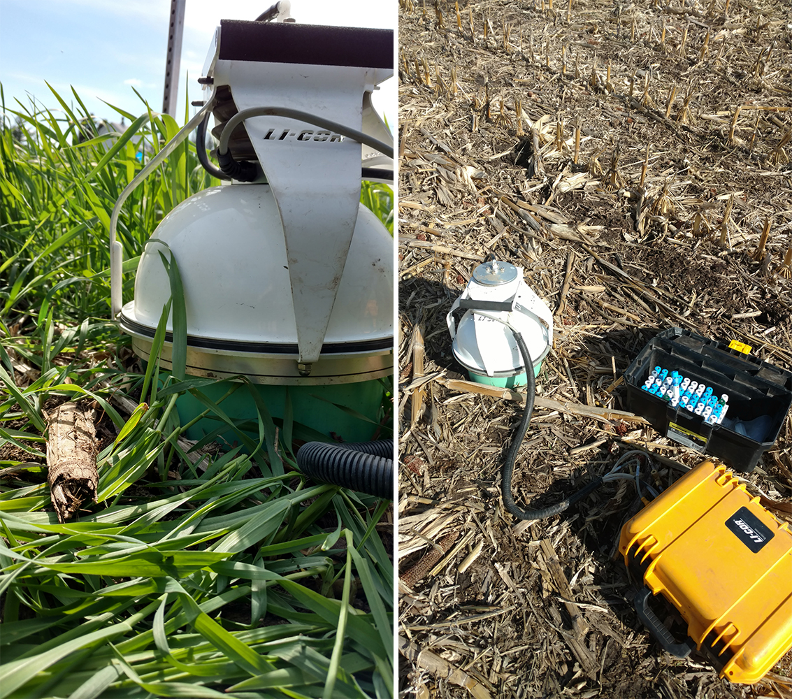 Field sensors measuring CO2 loss under cover crops
