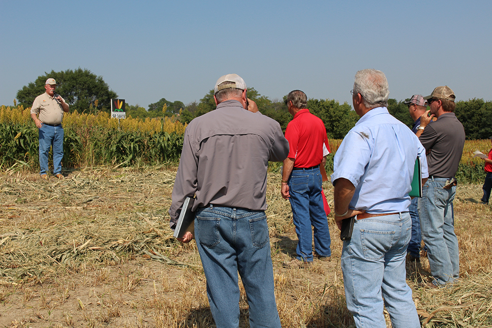 Rick Kochenower, Agronomist, Sorghum Partners, discusses field performance of hybrid entries