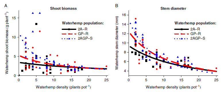 Charts showing waterhemp shoot biomass and stem diameter at R1 in the three waterhemp populations