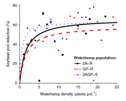Chart showing soybean pod reduction against three waterhemp populations