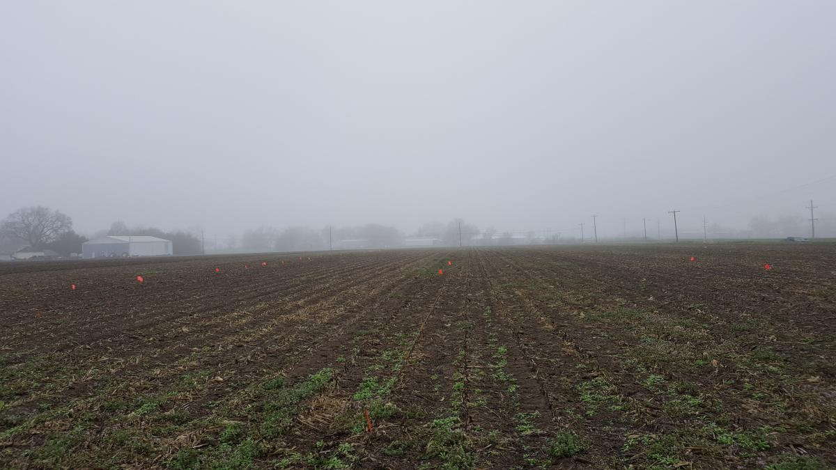 Temperature inversion over a field