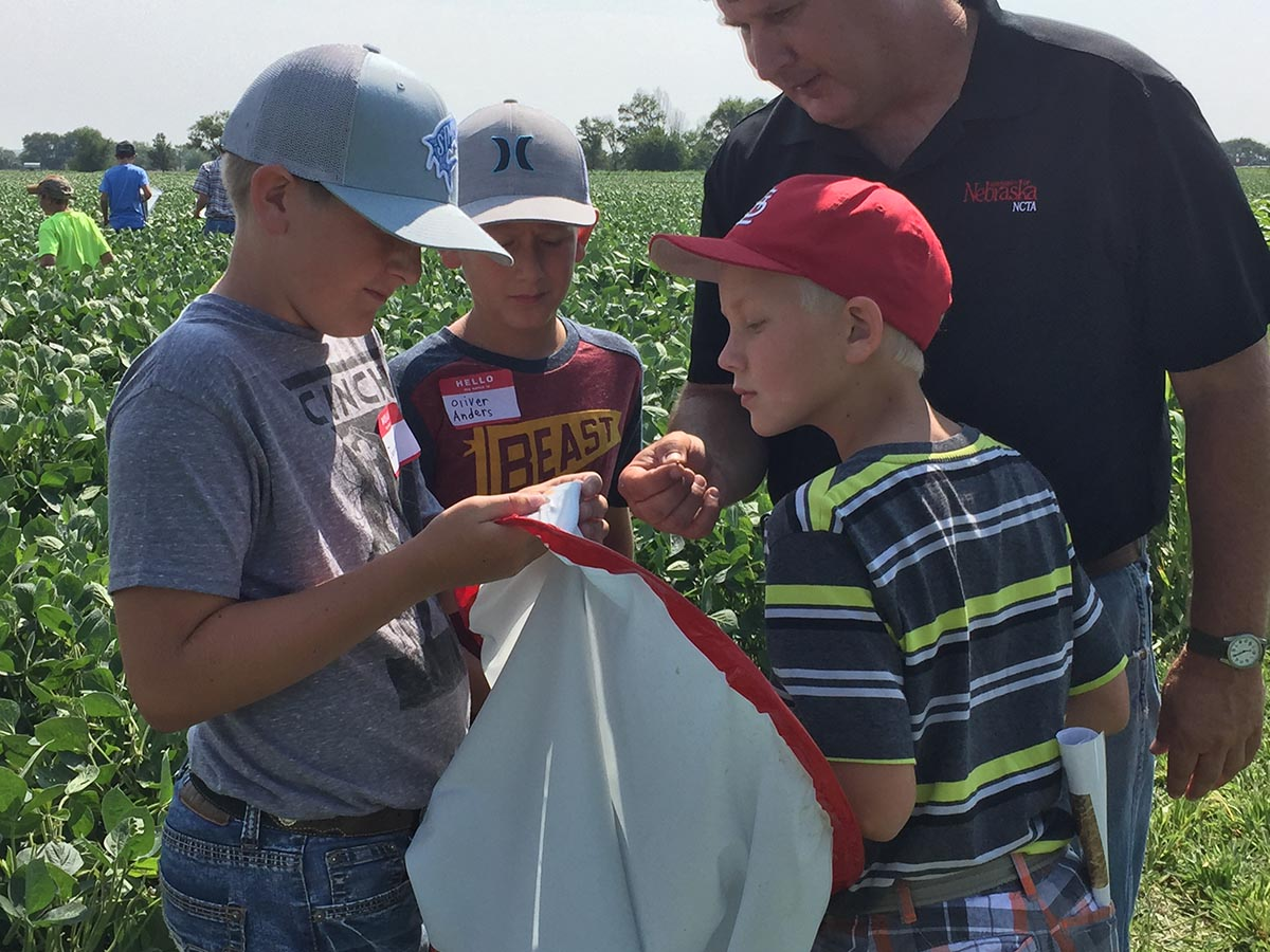Youth participating in a previous Agronomy Youth Field Day at Curtis