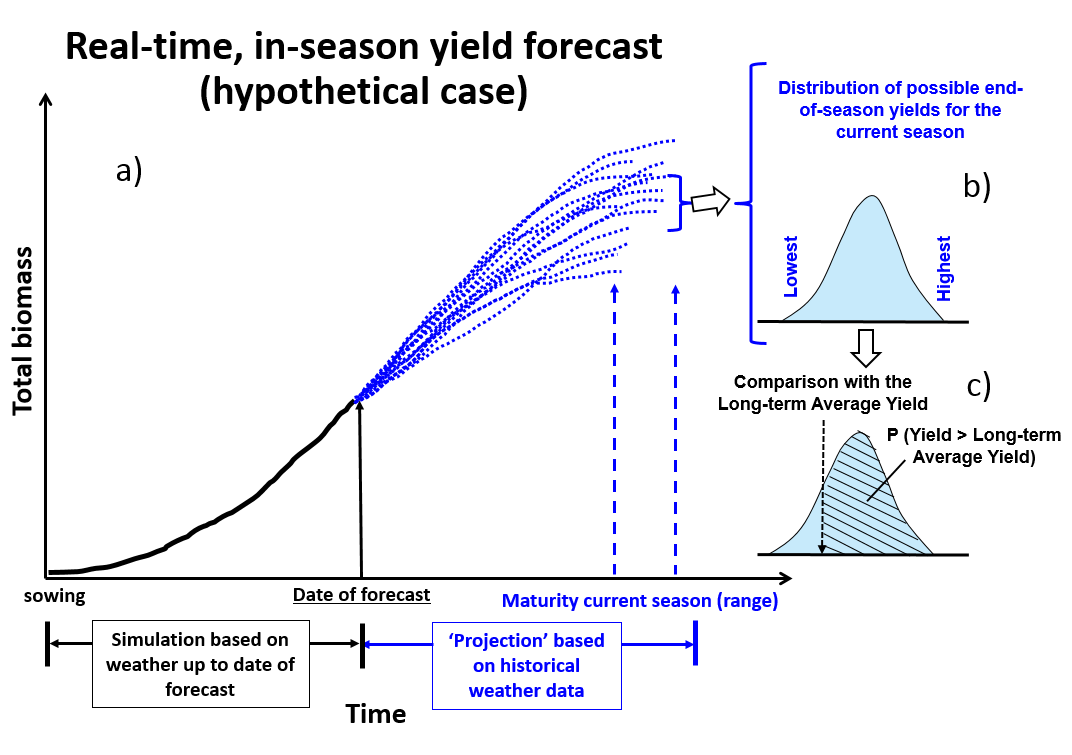 Diagram showing how the corn yield forecasts are performed with Hybrid-Maize