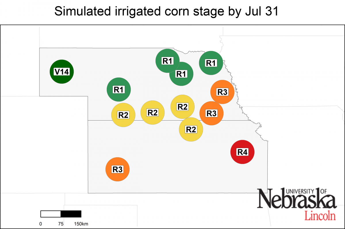 Irriated growth stage as of July 15, 2019