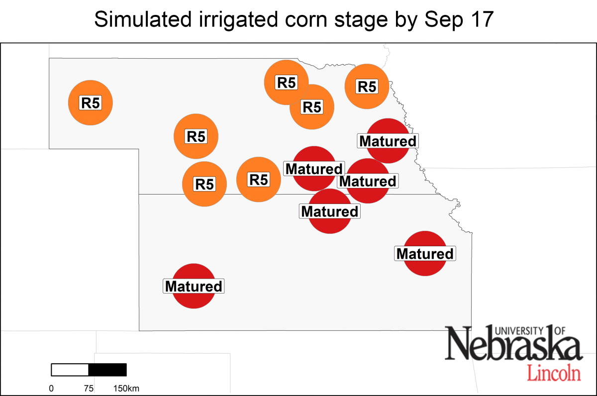 Irriated growth stage as of September 17, 2019