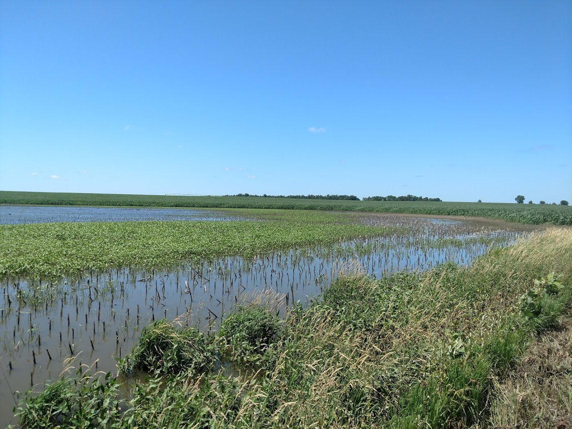 Flooded field in Clay County in south central Nebraska