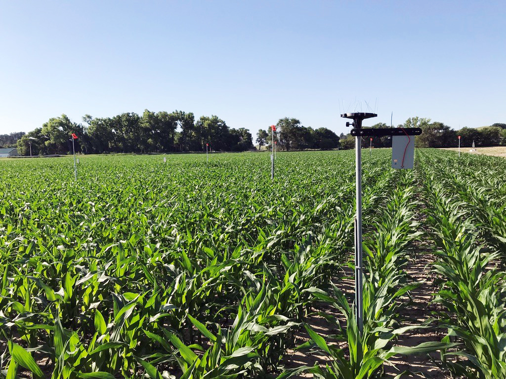 Researchers with the University of Nebraska-Lincoln will use the Arable Mark IOT device to record 40 variables in Nebraska farm fields as part of a research effort to improve data farmers use to determine whether they should irrigate.