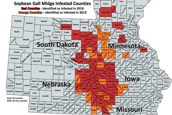 Five-state map of counties where soybean gall midge has been confirmed.