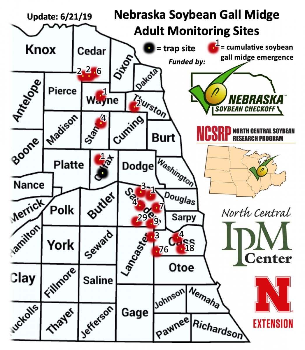 Map of soybean gall midge occurrence 6-21-19