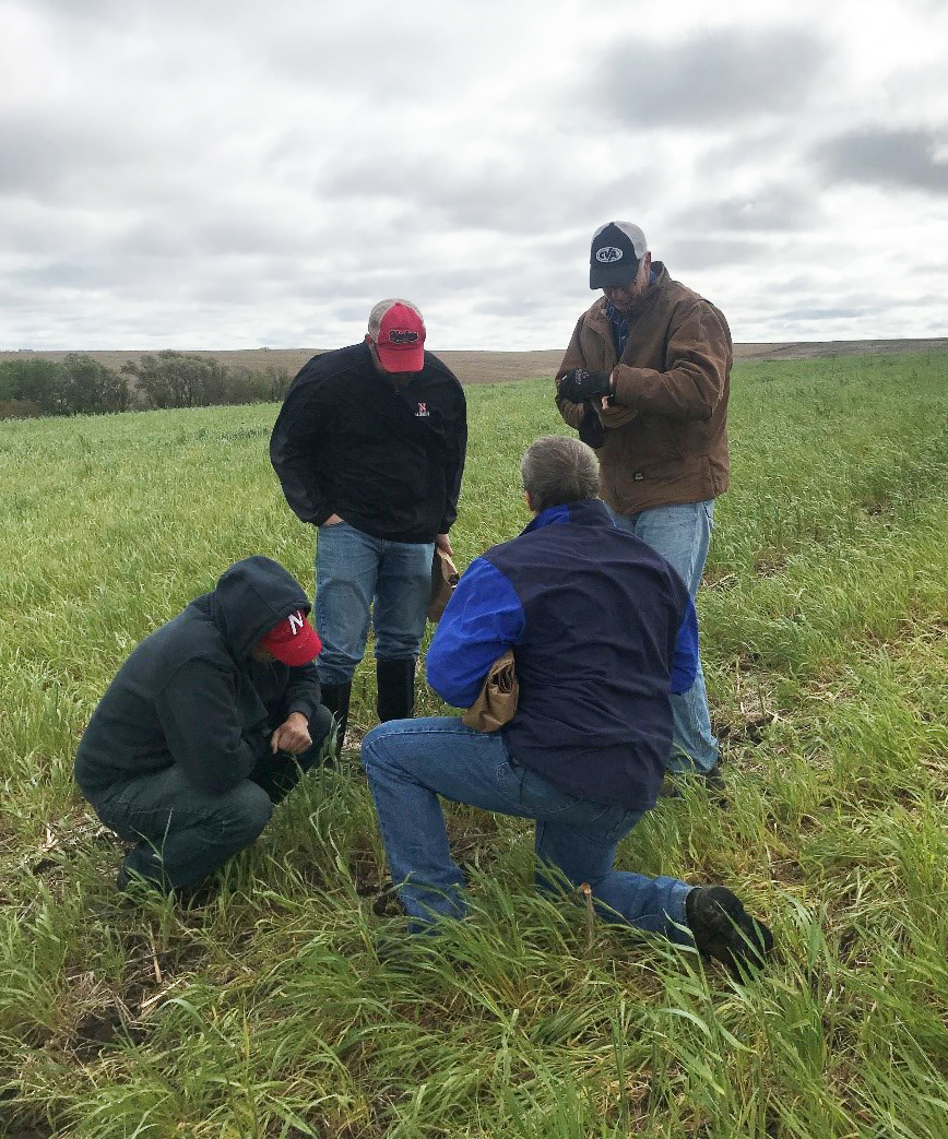 Field visit to research site in Soil Health Initiative Project