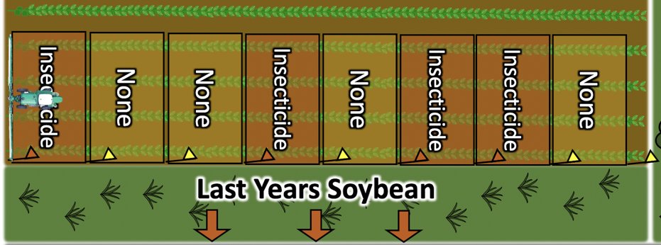 Diagram showing random unsprayed (none) areas the width of boom along a field edge measuring about 50-100 ft long and 90-100 ft wide to determine if any efficacy was achieved with an insecticide application.