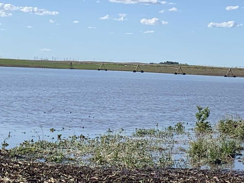 flooded fields in central Nebraska