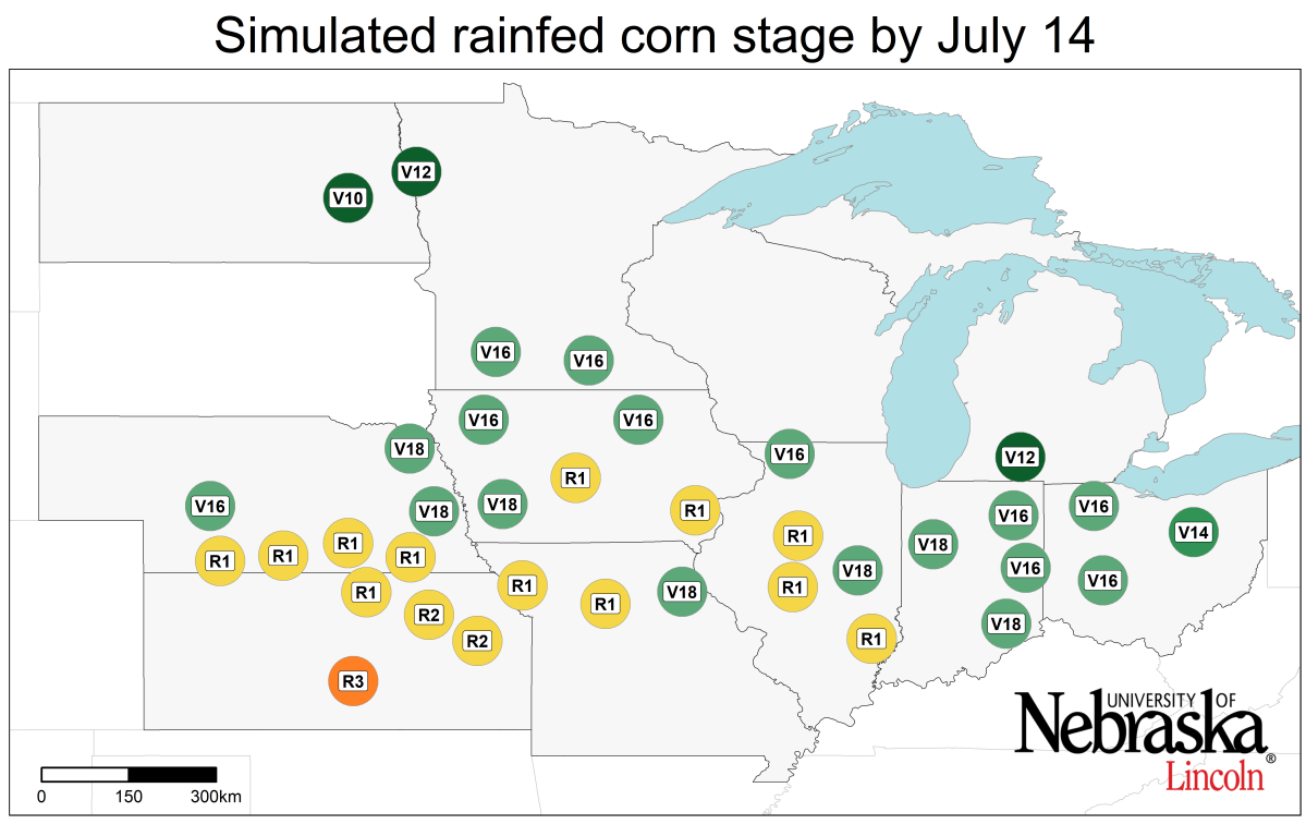 Graph of Simulated developmental stage for irrigated and rainfed corn at each location