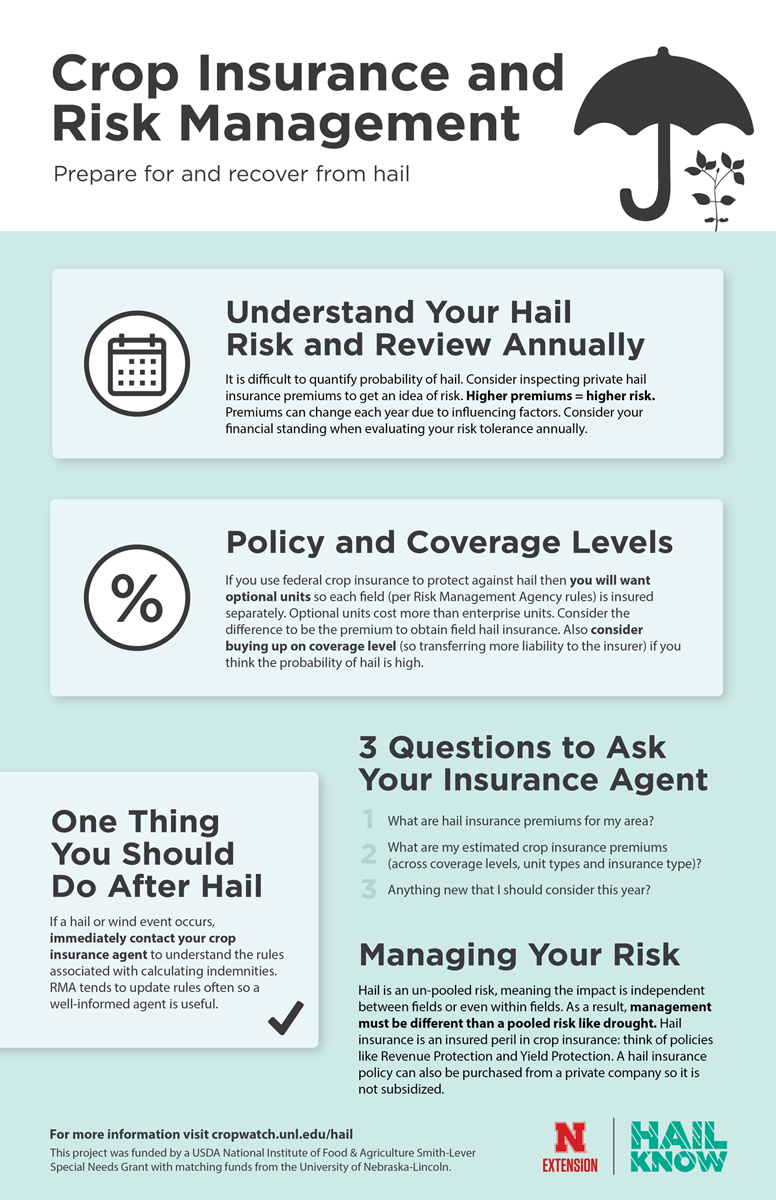 Infographic on crop insurance and risk management