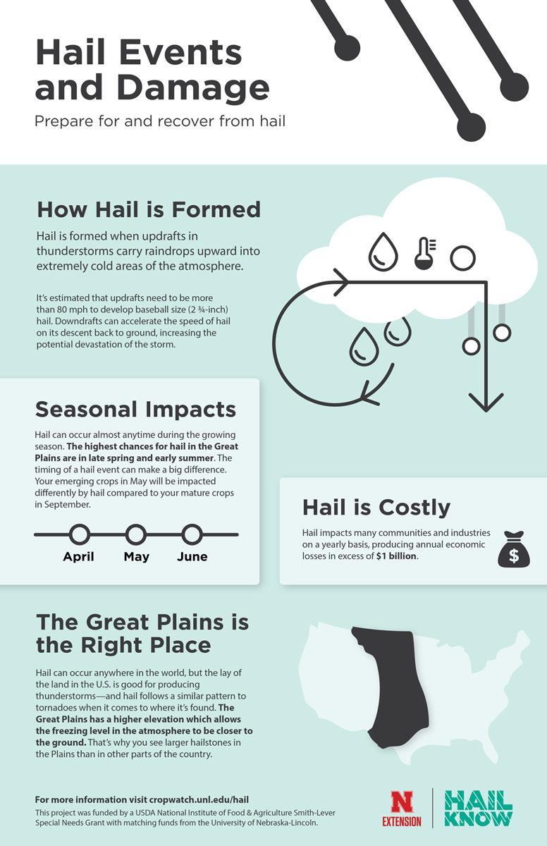 Hail Know Hail Damage Infographic
