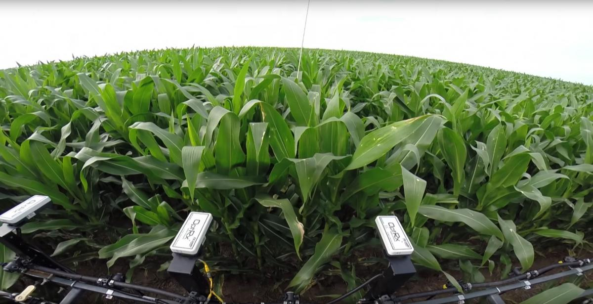 On-Farm Research Field Sensors
