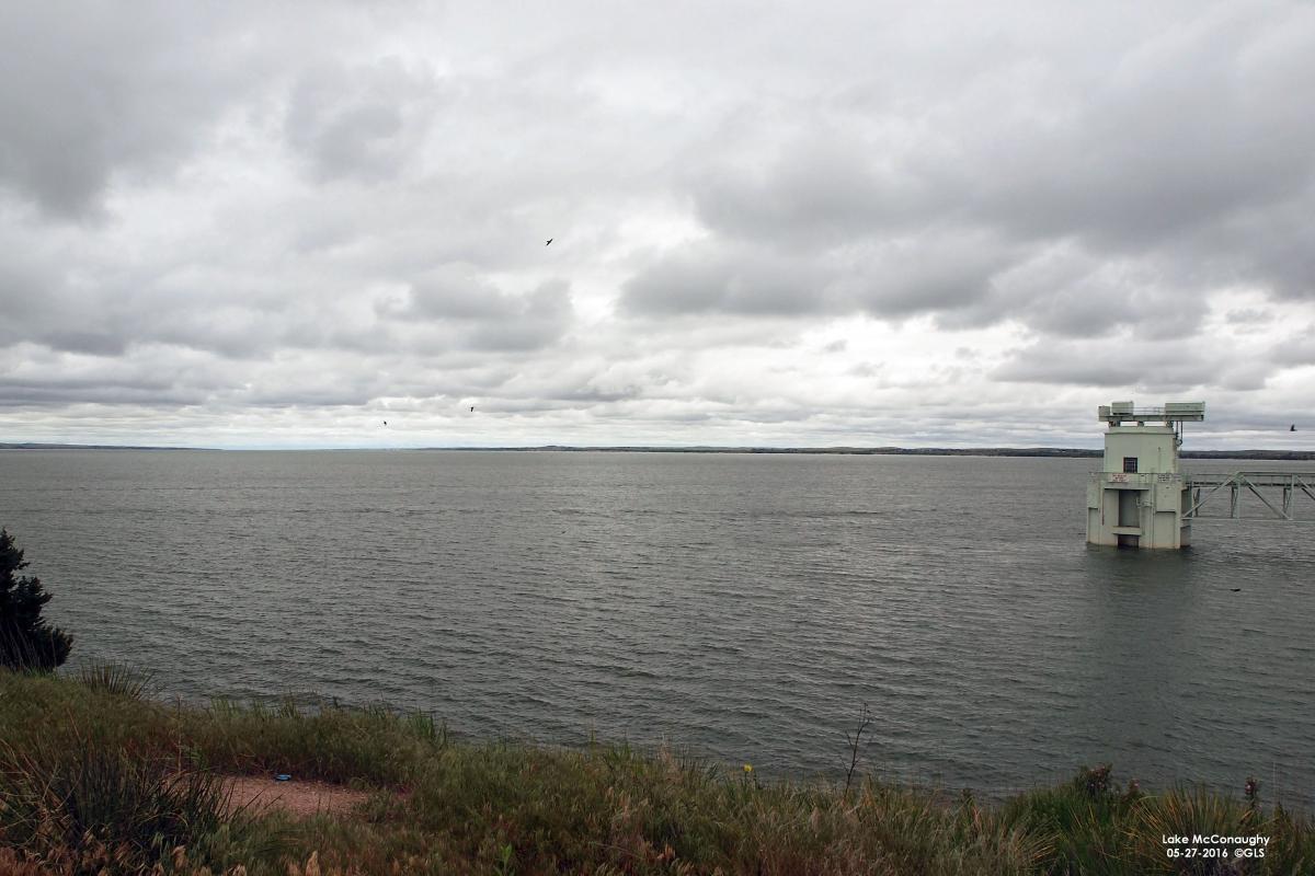 North Platte River Basin Water Update Cropwatch