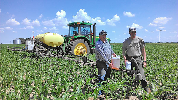 Preparing for field application of sugar
