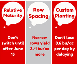 Delayed soybean planting tips