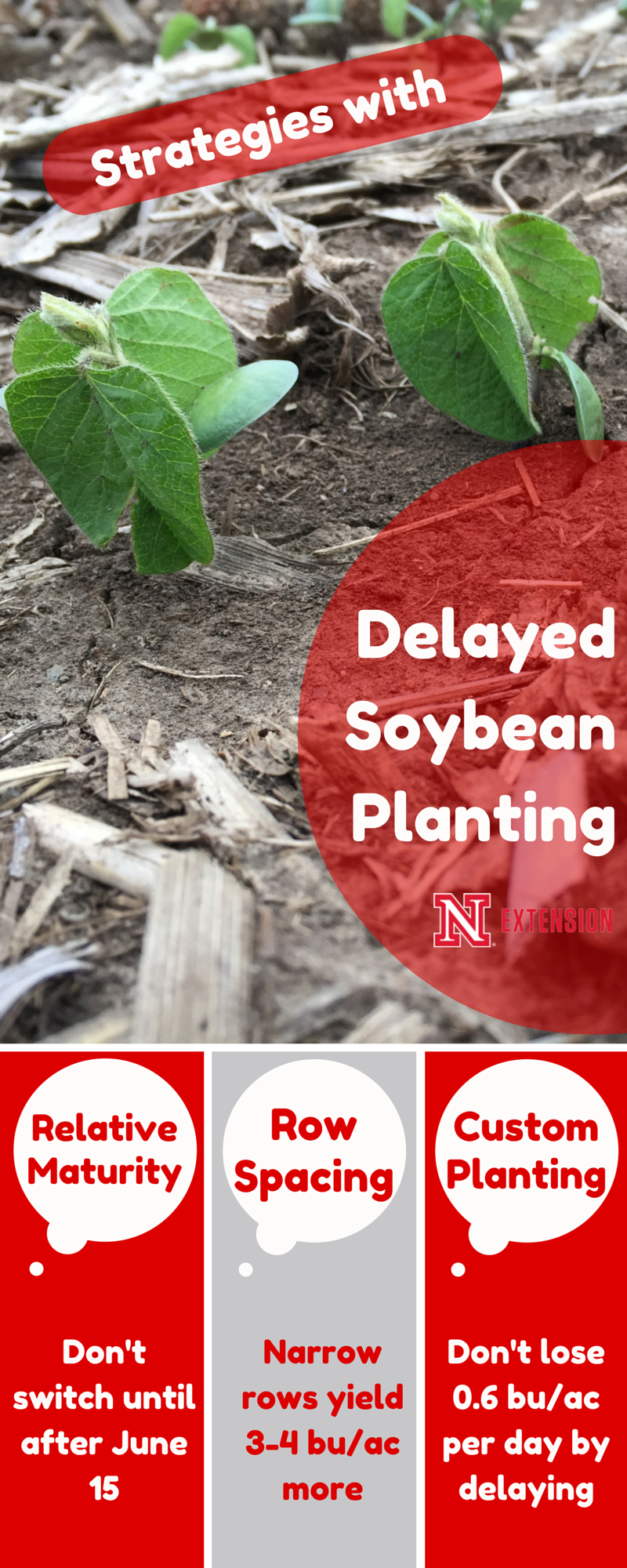 Benefits of delayed planting