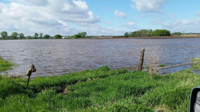 Flooded field near Cretge